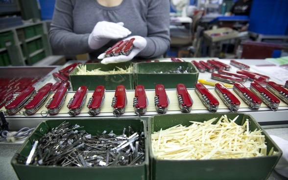 A row of Swiss army knives laid out on a workbench.