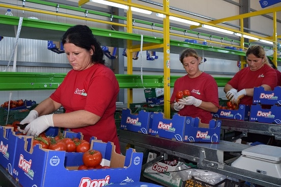Workers at agribusiness centre DONI Fruit in Lushnje, Albania