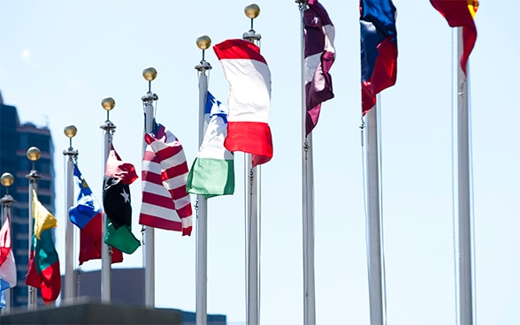 Image of member states' flags flying in front of United Nations headquarters in New York.