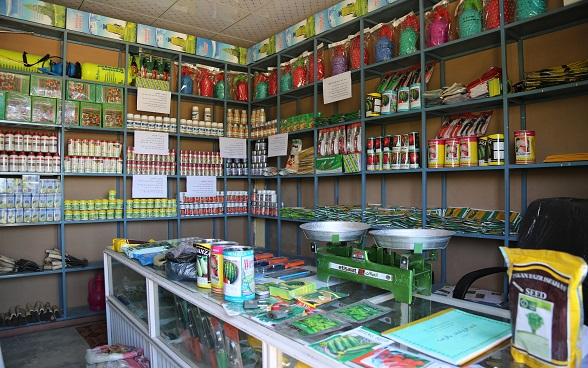 Tolo Fruit Cooperative's Shop