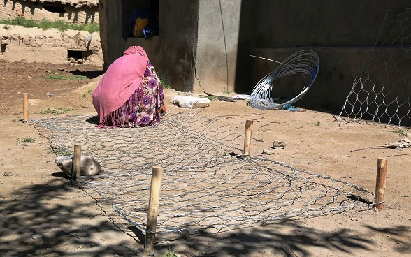 Gabion weaving by women