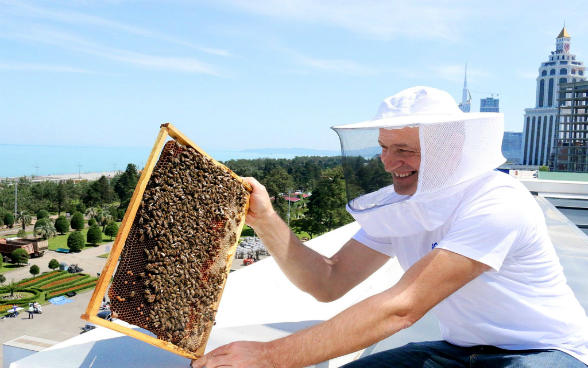 A man in a protective suit holding a honeycomb full of bees on the roof of a high-rise building.